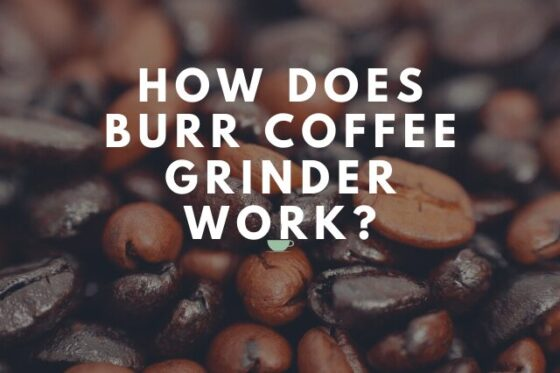 How does Burr Coffee Grinder Work?